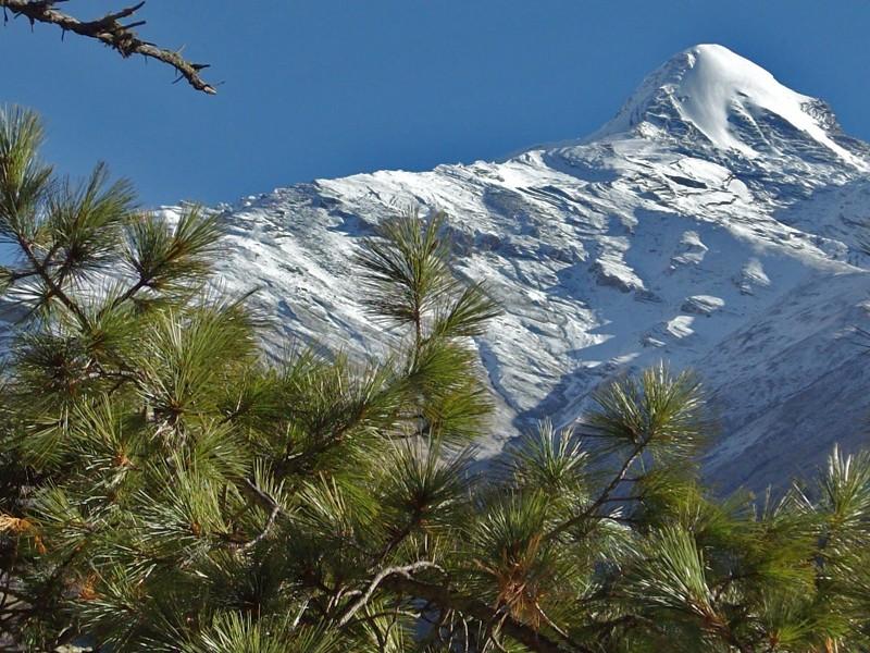 Pisang Peak(6091m)Climbing