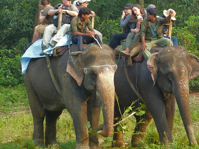 Chitwan Safari in Nepal